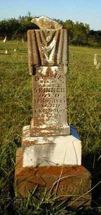 SKINNER, OLLIE - Logan County, Arkansas   OLLIE SKINNER - Arkansas Gravestone Photos