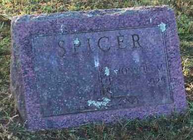 SPICER, DELIA C - Logan County, Arkansas   DELIA C SPICER - Arkansas Gravestone Photos
