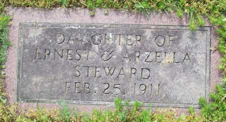 STEWARD, UNKNOWN - Logan County, Arkansas | UNKNOWN STEWARD - Arkansas Gravestone Photos