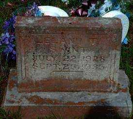 SWINT, LELAND T. - Logan County, Arkansas | LELAND T. SWINT - Arkansas Gravestone Photos