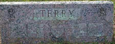 WILKINS TERRY, MARTHA JANE - Logan County, Arkansas | MARTHA JANE WILKINS TERRY - Arkansas Gravestone Photos