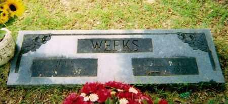 WEEKS, IDUS - Logan County, Arkansas   IDUS WEEKS - Arkansas Gravestone Photos