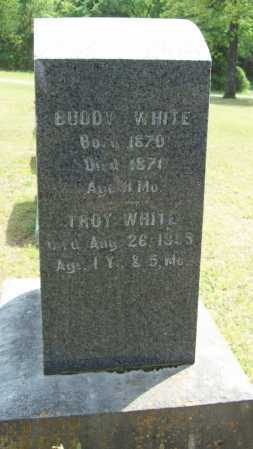WHITE, TROY - Logan County, Arkansas | TROY WHITE - Arkansas Gravestone Photos