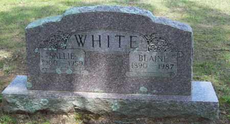 WHITE, SALLIE - Logan County, Arkansas | SALLIE WHITE - Arkansas Gravestone Photos