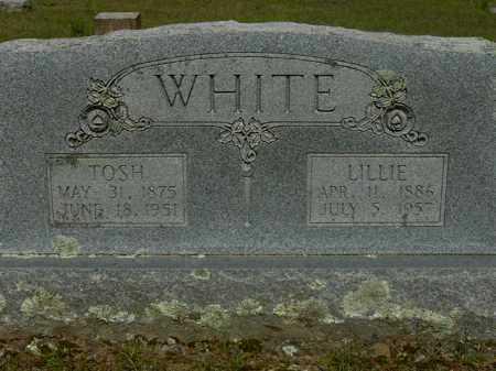 WHITE, LILLIE - Logan County, Arkansas | LILLIE WHITE - Arkansas Gravestone Photos