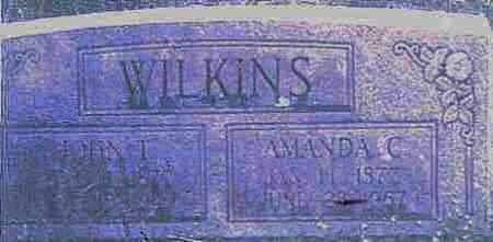 WILKINS, AMANDA CAROLINE - Logan County, Arkansas | AMANDA CAROLINE WILKINS - Arkansas Gravestone Photos