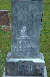 "BRASHEAR WILKINS, MARY E. ""MOLLIE"" - Logan County, Arkansas | MARY E. ""MOLLIE"" BRASHEAR WILKINS - Arkansas Gravestone Photos"