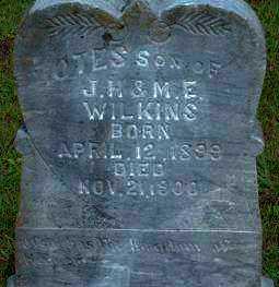 WILKINS, OTES - Logan County, Arkansas | OTES WILKINS - Arkansas Gravestone Photos