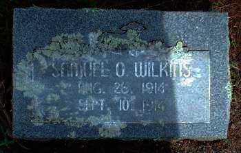 WILKINS, SAMUEL O. - Logan County, Arkansas   SAMUEL O. WILKINS - Arkansas Gravestone Photos