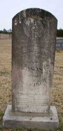 WILSON, J - Logan County, Arkansas | J WILSON - Arkansas Gravestone Photos