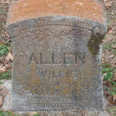 ALLEN, WILLIE - Lonoke County, Arkansas | WILLIE ALLEN - Arkansas Gravestone Photos