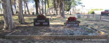 BARGER, FAMILY PLOT (OVERVIEW) - Lonoke County, Arkansas | FAMILY PLOT (OVERVIEW) BARGER - Arkansas Gravestone Photos