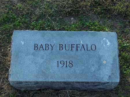 BUFFALO, BABY - Lonoke County, Arkansas   BABY BUFFALO - Arkansas Gravestone Photos