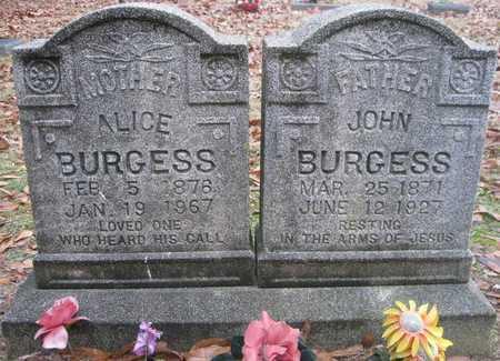 BURGESS, ALICE - Lonoke County, Arkansas | ALICE BURGESS - Arkansas Gravestone Photos