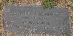 CAULEY (VETERAN WWII), ANCLE E - Lonoke County, Arkansas | ANCLE E CAULEY (VETERAN WWII) - Arkansas Gravestone Photos