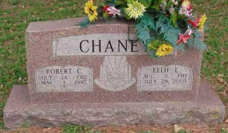 CHANEY, ROBERT C - Lonoke County, Arkansas | ROBERT C CHANEY - Arkansas Gravestone Photos