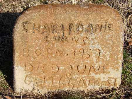 EVANS, CHARLES DANIE - Lonoke County, Arkansas | CHARLES DANIE EVANS - Arkansas Gravestone Photos