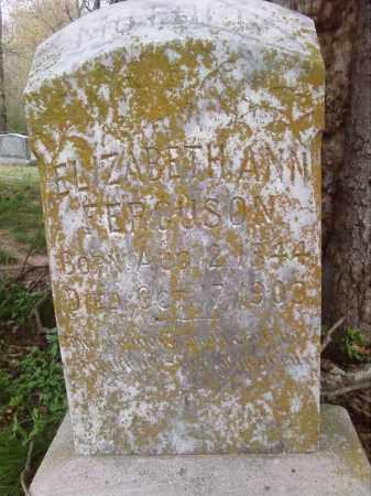 FERGUSON, ELIZABETH ANN - Lonoke County, Arkansas   ELIZABETH ANN FERGUSON - Arkansas Gravestone Photos