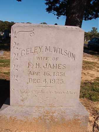JAMES, CELEY M - Lonoke County, Arkansas   CELEY M JAMES - Arkansas Gravestone Photos