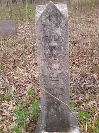 MCINTOSH, CAROLINE - Lonoke County, Arkansas | CAROLINE MCINTOSH - Arkansas Gravestone Photos