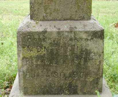 MONTAGUE, ROBERT HORNOR - Lonoke County, Arkansas | ROBERT HORNOR MONTAGUE - Arkansas Gravestone Photos