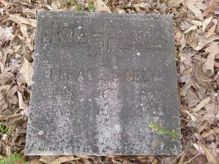 NEELY, PLEAS - Lonoke County, Arkansas | PLEAS NEELY - Arkansas Gravestone Photos