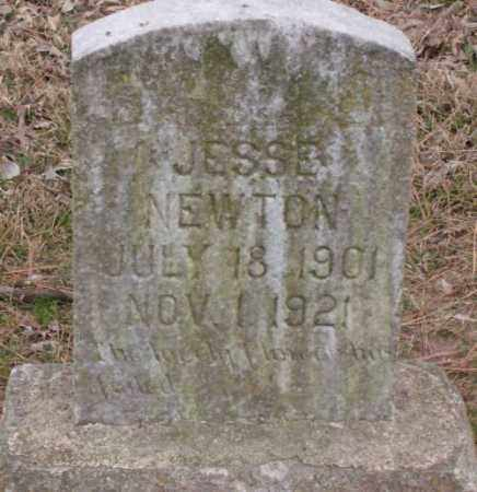 NEWTON, JESSE - Lonoke County, Arkansas | JESSE NEWTON - Arkansas Gravestone Photos