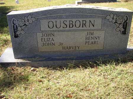 OUSBORN, ELIZA - Lonoke County, Arkansas   ELIZA OUSBORN - Arkansas Gravestone Photos