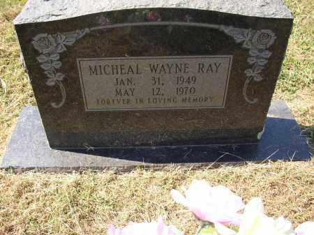 RAY (VETERAN VIET, KIA), MICHAEL WAYNE - Lonoke County, Arkansas | MICHAEL WAYNE RAY (VETERAN VIET, KIA) - Arkansas Gravestone Photos