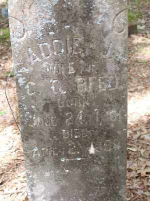 REED, ADDIE J. - Lonoke County, Arkansas | ADDIE J. REED - Arkansas Gravestone Photos