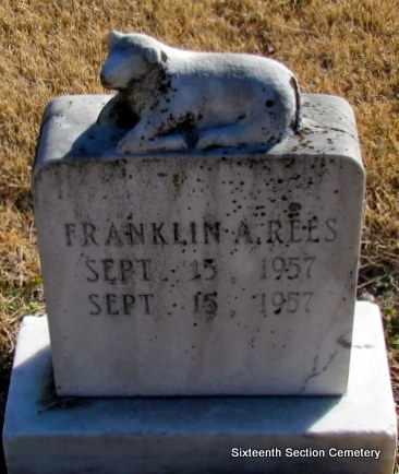 REES, FRANKLIN A - Lonoke County, Arkansas   FRANKLIN A REES - Arkansas Gravestone Photos