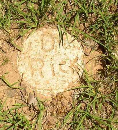 RICK, D. - Lonoke County, Arkansas | D. RICK - Arkansas Gravestone Photos