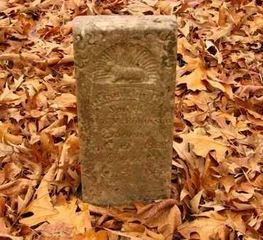 ROBINSON, FRANKLIN P. - Lonoke County, Arkansas | FRANKLIN P. ROBINSON - Arkansas Gravestone Photos