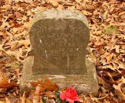 LESLIE ROBINSON, VIENNA - Lonoke County, Arkansas | VIENNA LESLIE ROBINSON - Arkansas Gravestone Photos