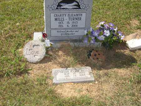 MILLS TURNER, CHARITY ELIZABETH - Lonoke County, Arkansas | CHARITY ELIZABETH MILLS TURNER - Arkansas Gravestone Photos