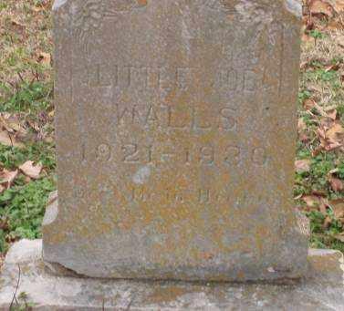 WALLS, JOE - Lonoke County, Arkansas | JOE WALLS - Arkansas Gravestone Photos