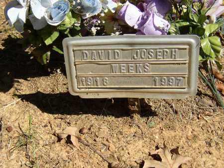WEEKS, DAVID JOSEPH - Lonoke County, Arkansas   DAVID JOSEPH WEEKS - Arkansas Gravestone Photos