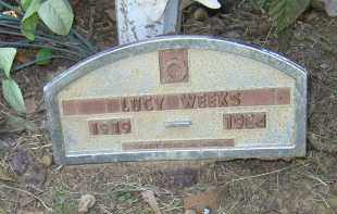 WEEKS, LUCY - Lonoke County, Arkansas | LUCY WEEKS - Arkansas Gravestone Photos