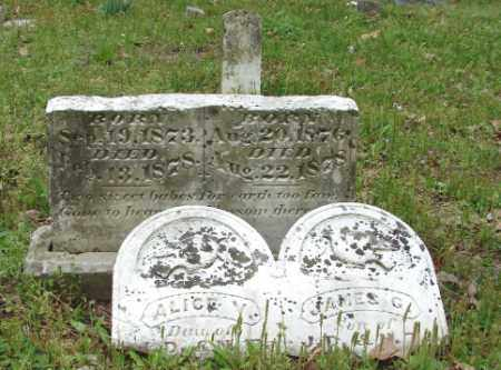 WILLIAMS, ALICE V. - Lonoke County, Arkansas | ALICE V. WILLIAMS - Arkansas Gravestone Photos