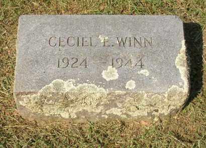 WINN, CECIEL E. - Lonoke County, Arkansas   CECIEL E. WINN - Arkansas Gravestone Photos