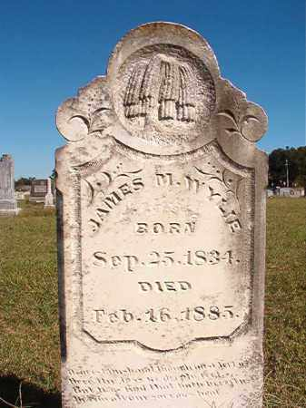 WYLIE, JAMES M - Lonoke County, Arkansas | JAMES M WYLIE - Arkansas Gravestone Photos
