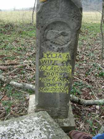 BOTTOM ANTHONY, LELIA A. - Madison County, Arkansas | LELIA A. BOTTOM ANTHONY - Arkansas Gravestone Photos