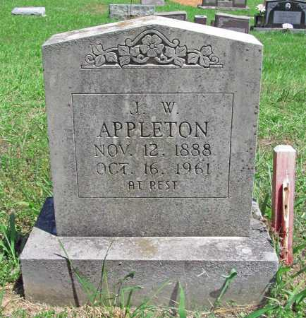 APPLETON, JOHN WALTER - Madison County, Arkansas | JOHN WALTER APPLETON - Arkansas Gravestone Photos