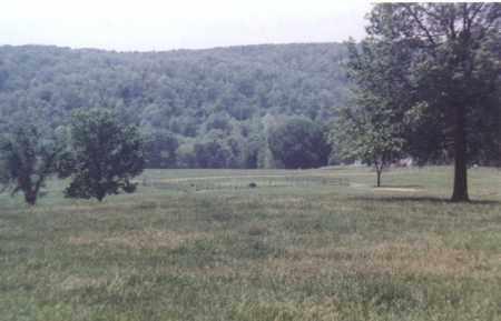 *BOHANNON-JONES-PEACE CEMETERY,  - Madison County, Arkansas |  *BOHANNON-JONES-PEACE CEMETERY - Arkansas Gravestone Photos