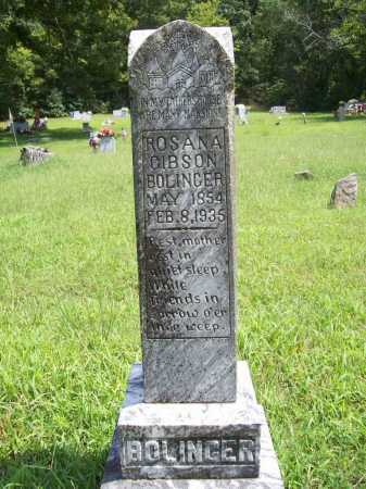 BOLINGER, ROSANA - Madison County, Arkansas | ROSANA BOLINGER - Arkansas Gravestone Photos