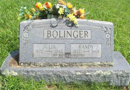 BOLINGER, RANDY - Madison County, Arkansas | RANDY BOLINGER - Arkansas Gravestone Photos