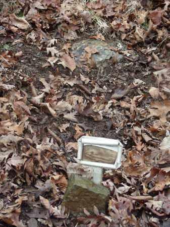BURGIN, ALFRED RAY - Madison County, Arkansas | ALFRED RAY BURGIN - Arkansas Gravestone Photos