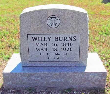 BURNS (VETERAN CSA), WILEY - Madison County, Arkansas | WILEY BURNS (VETERAN CSA) - Arkansas Gravestone Photos
