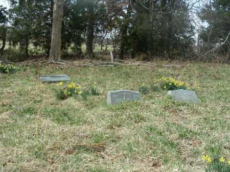 *OVERVIEW,  - Madison County, Arkansas    *OVERVIEW - Arkansas Gravestone Photos