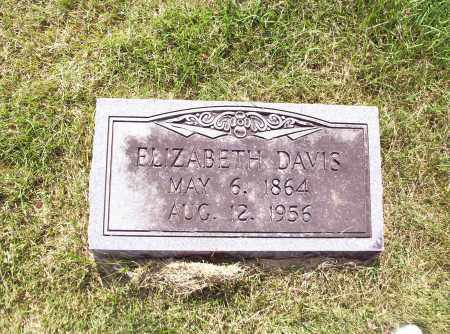 DAVIS, ELIZABETH - Madison County, Arkansas | ELIZABETH DAVIS - Arkansas Gravestone Photos